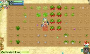 rf4-farm-growing-3